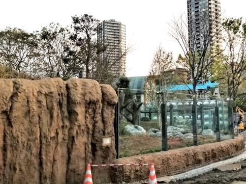 2020年4月、上野動物園を縦断する台東区道「動物園通り」から見えた施工中の新パンダ舎には、高さ2.5mのガラスが。茶色の擬岩は荒々しい感じに仕上げてある(写真:中川 美帆)