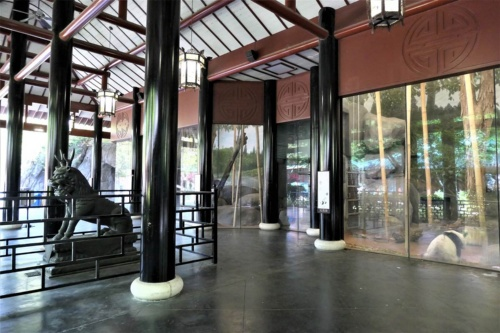 米国メンフィス動物園のパンダ舎。写っているのは2000年8月3日生まれの雌のヤァヤァ(雅雅)。パンダの近くには鳥などを配置していて、一帯の入り口には寺院のような建物が建っている。2018年5月撮影(写真:中川 美帆)