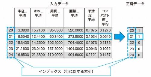 入力データ(df)と正解データ(y)の関係