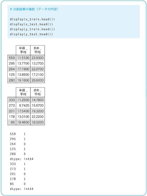 分割結果の確認(データの内容)