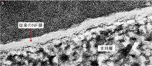 図1 NF膜の表面