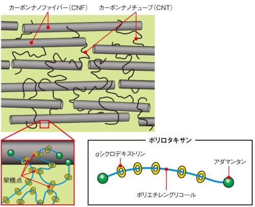 図3 ポリロタキサンで柔軟性を確保