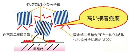 図3 ポリプロピレンアイオノマーの分子構造のイメージ