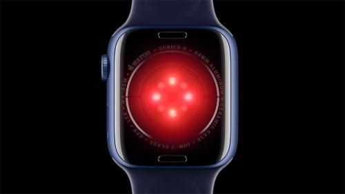 血中酸素飽和度を測定可能なApple Watch Series 6は、裏側(腕に当たる部分)に搭載されているセンサーがこれまでとは大きく変わった