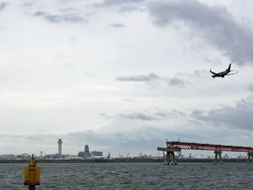 コロナ禍で運休や減便が相次ぎ、羽田空港の駐機場は飛べない機体であふれかえった。2020年5月撮影(写真:日経クロステック)