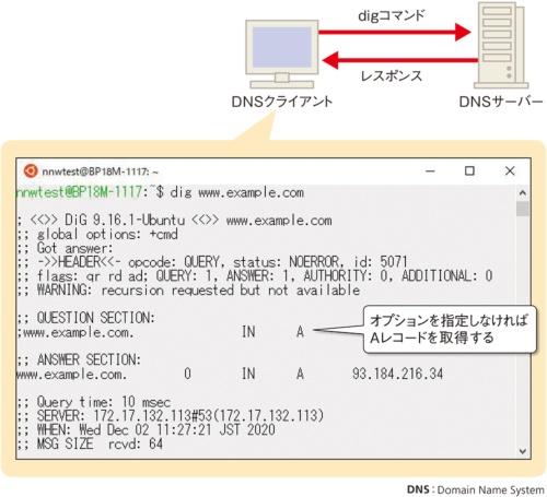「dig」コマンドでDNSサーバーからの生の情報を表示