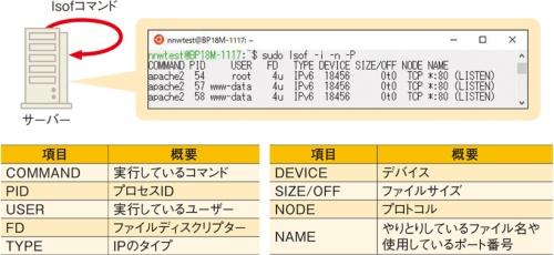 「lsof」コマンドで開かれているファイルやポートを調べる