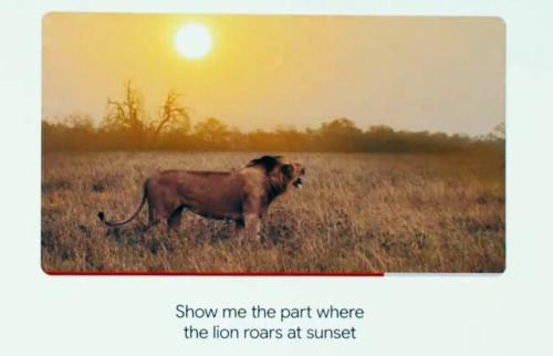 ライオンの様子を撮影した動画から「夕暮れ時にライオンが雄たけびを上げている場面」に瞬時にアクセス可能
