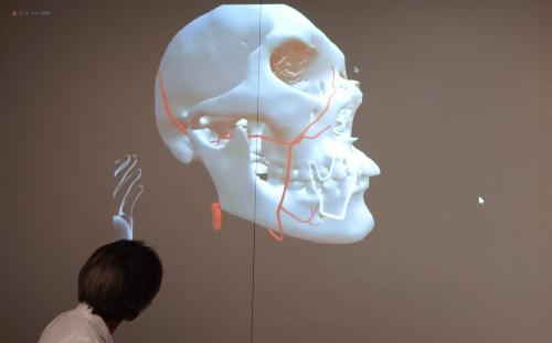 図2 仮想空間上で、頭蓋骨などの3Dモデルを参照しながら指導する。自由に移動可能な6DoF(Degree of Freedom)であるため、3Dモデルをさまざまな角度から観察できる(撮影:日経クロステック)