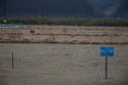 気仙川沿いでは空き地が目立つ。2021年2月10日撮影(写真:日経コンストラクション)