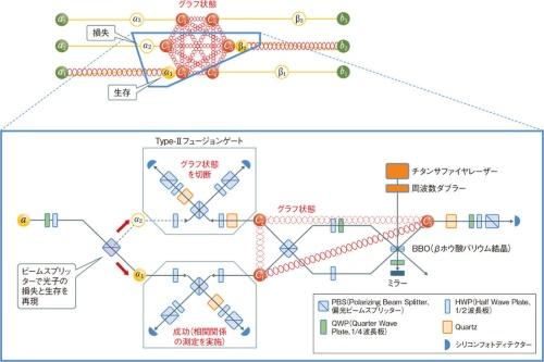 3光子の全光量子中継に成功