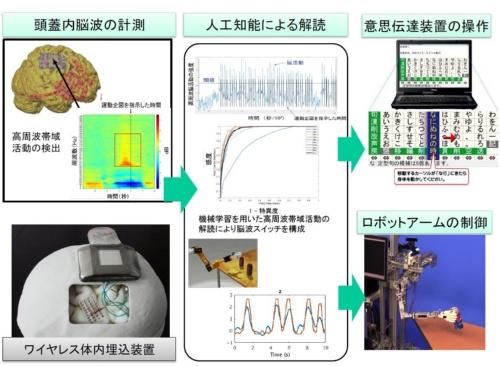 大阪大学で実施しているBMI研究の概要