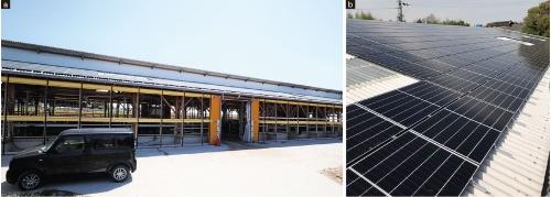 図1 牛舎の屋根に設置した太陽光発電パネル