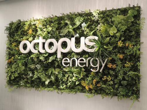 東京ガスが2021年2月に新たに設立したTGオクトパスエナジー