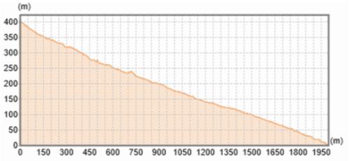 土石流の流路の地形断面図。縦横比は2:1(資料:国土地理院)