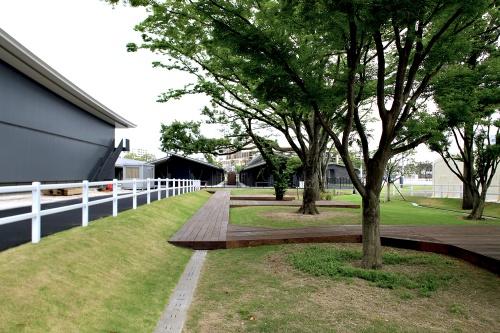 馬事公苑の敷地中央部にある放牧場(写真:安川 千秋)