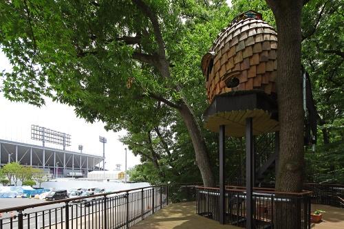 馬事公苑の武蔵野自然林部分に設けられたツリーハウス(写真:安川 千秋)