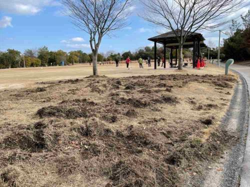 「広島県立びんご運動公園」におけるイノシシの侵入被害の例。土が掘り起こされている