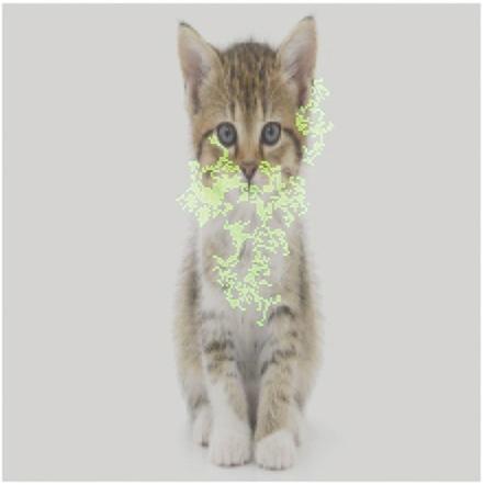 図2 画像から「猫」を検出する機械学習モデルについて、画像内のどのピクセルが検出に大きく寄与したかを緑色で示した
