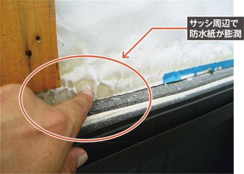 木造2階建ての住宅で雨漏りが発生。筆者が外壁を剥がしたところ、透湿防水シートの端部(サッシとの取り合い部)が変色して膨れていた(写真:第一浜名建装)