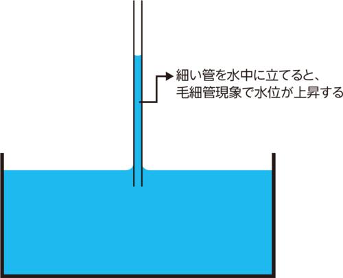 〔図2〕重力に逆らって水が上方に移動