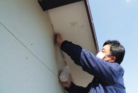 その後、組み上げた施設外壁の試験体1・3・4それぞれに、外装材と軒天の取り合いから同量の水を注いだ(写真:日経ホームビルダー)