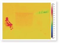 赤外線サーモグラフィー画像(資料:前真之研究室)