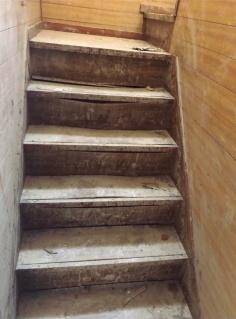 合板が剥がれて交換せざるを得なくなった階段(写真:北山 紀明)