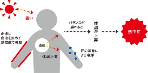 〔図1〕熱が体にたまると発症