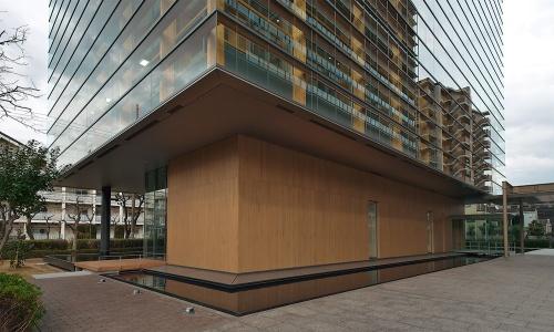 1階が後退した建物の足元まわり。免震のエキスパンションジョイントがある。1階の外壁はヒノキ板張り(写真:生田 将人)