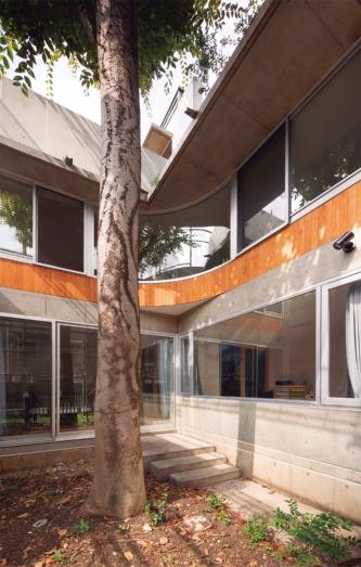 〔写真4〕中庭のけやきを取り囲むような曲面ガラス窓