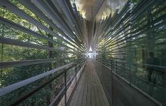 7. アルベール・カーン美術館(隈研吾、建設中)。道路側はアルミルーバー、日本庭園側のテラスには木とアルミのルーバーを吊る(写真:日経アーキテクチュア)