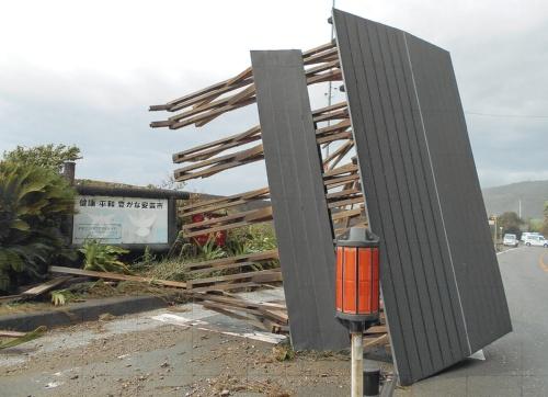 〔写真1〕台風の影響で倒壊