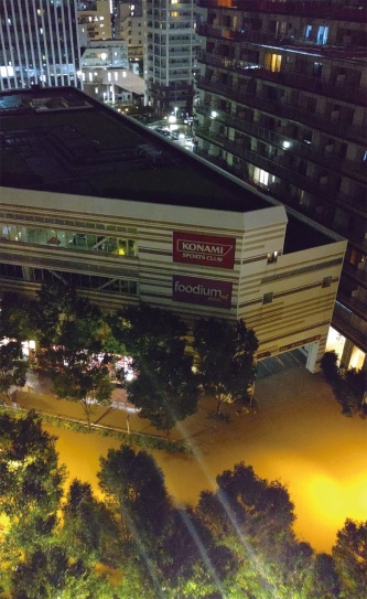 〔写真3〕武蔵小杉駅周辺が浸水