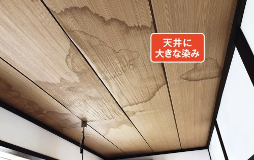 雨漏りのトラブルに見舞われたのは、築30年の木造2階建て住宅。現地調査をしたところ、2階の天井に大きな染みが見られた(写真:神清)