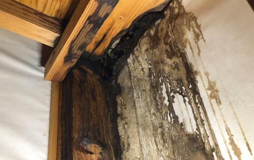 パラペットの室内側で確認した雨漏り。柱や野地板が真っ黒に染みていた。築15年くらいの2階建て木造戸建て住宅である。住まい手は、中古で購入し、2年足らずで雨漏りを発見した(写真:神清)