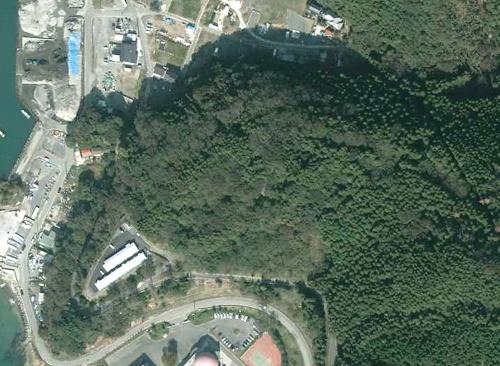 写真中央が造成前の山の様子(2012年撮影)。石巻市では東日本大震災で3277人が亡くなり(直接死)、計約3万3000棟の建物が全半壊に至った(写真:国土地理院)