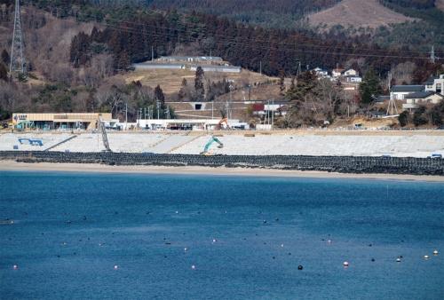〔写真1〕砂浜を保存して防潮堤を建設