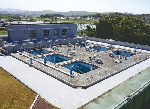 福岡県中間市唐戸浄水場の急速ろ過地。沈殿池を経由した水をさらに細かい砂の層に通して小さなゴミを除く