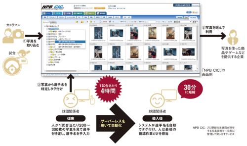 図 日本野球機構(NPB)が運営する「NPB CIC」の概要