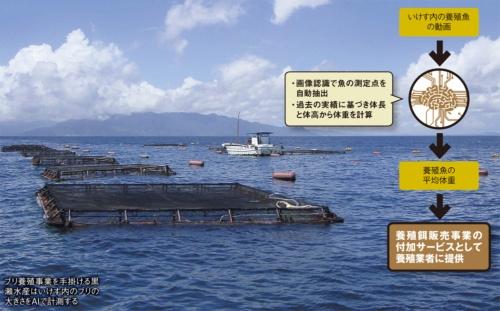 図 日本水産が開発したAIとその効果