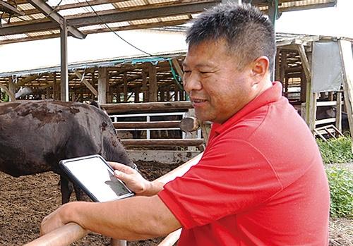 タブレットで作業履歴や牛の状態を閲覧できる