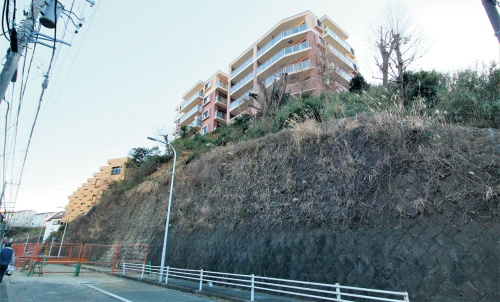 写真2■ 土砂崩落が発生した斜面。2月6日の撮影時には土砂が撤去されていた(写真:日経クロステック)