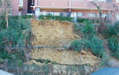 写真3■ 土砂が崩落した斜面の表層部分。国土交通省の調査によると、基盤岩の凝灰岩が風化し、深さ1mほどまで崩れていた。2月6日撮影(写真:日経クロステック)
