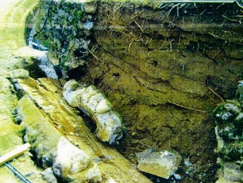 写真1■ 道路脇の石積み擁壁が崩落した事故現場(写真:ビオス法律事務所)