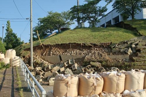 写真1■ 崩壊した山北総合体育館の法面。付近は1970年代後半に切り土して造成したが、崩れた法面は盛り土したようにも見える。村上市の職員によると、法面が崩れたのは地震発生から約1時間後だったという。特記以外の写真は6月20日に撮影(写真:日経 xTECH)