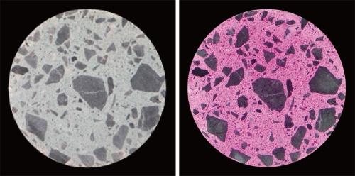 写真2■ 開発したコンクリート供試体の切断面。右はpH指示薬を噴霧した。変色は強アルカリ性を示す(写真:大成建設)