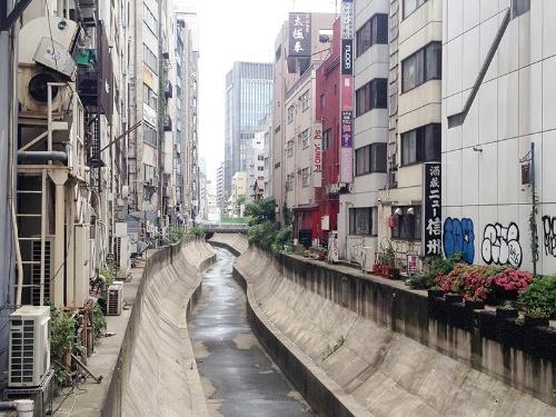写真3■ 改修前の渋谷川。高架橋は撤去されている。平常時は水の流れがなかった(写真:東京急行電鉄)