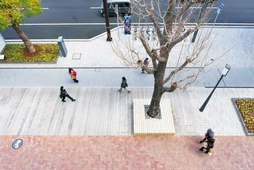 写真1 ■ 2018年9月に改修整備が完了したJR姫路駅北側の「大手前通り」南工区。幅員約16mの自転車歩行者道に、オープンカフェの出店などを想定して広さ100m2のウッドデッキの空間を設けた(写真:生田 将人)