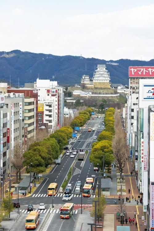 写真2 ■ 大手前通りは駅から姫路城へ続く道として、1955年に完成した。今回の改修では、写真手前側の約400mに花壇やウッドデッキを整備した(写真:生田 将人)